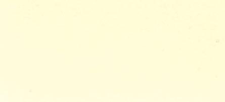 steel color option: ivory
